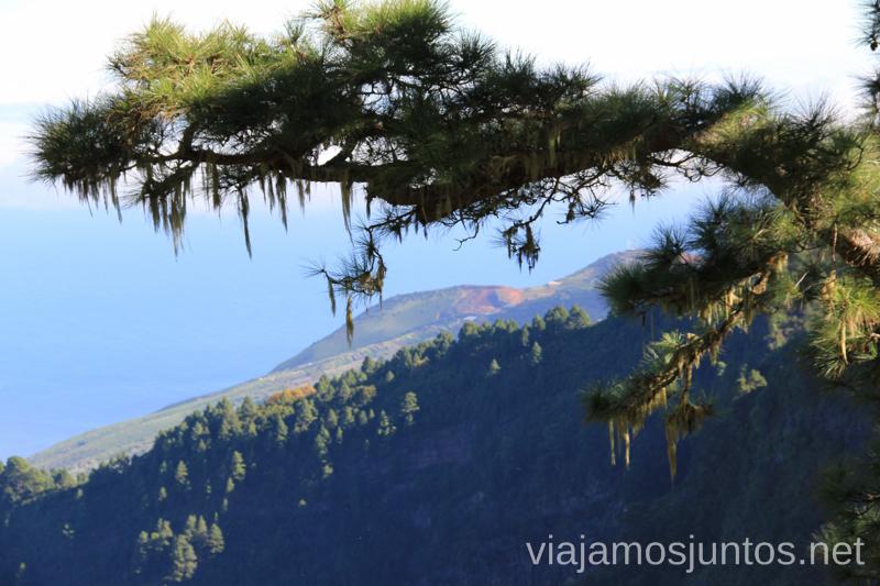 Vistas de las carreteras palmeras Carreteras más extremas de la Palma, Islas Canarias