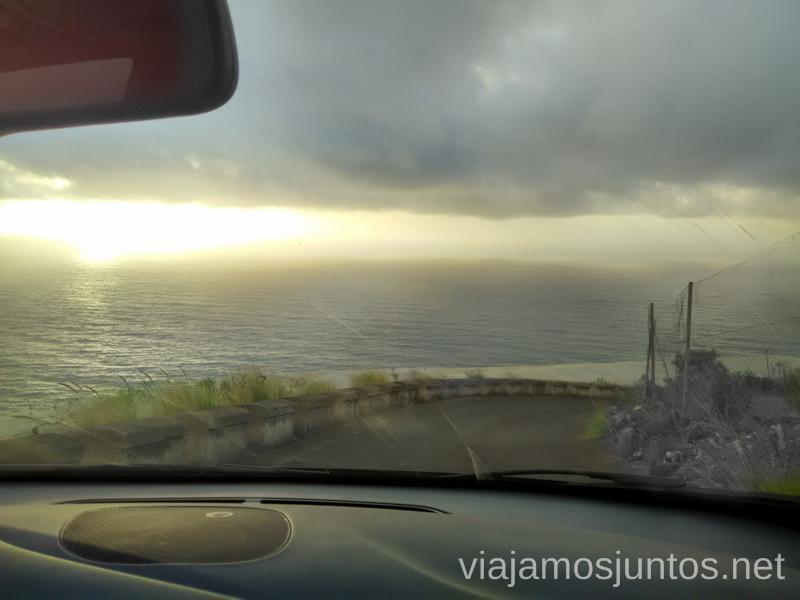 Sorpresas entre los palmerales, ¿a dónde lleva esta carretera? Carreteras más extremas de la Palma, Islas Canarias