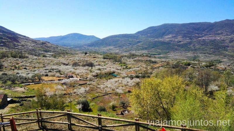 Miradores del Valle del Jerte Ver cerezos en flor en el Valle del Jerte Consejos prácticos, turcos, rincones secretos