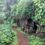 Las cuevas-viviendas de Buracas Ruta de los dragos de Buracas La Palma, islas Canarias