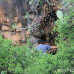 Descubriendo más escrituras prehistóricas, Buracas Ruta de los dragos de Buracas La Palma, islas Canarias