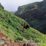 Camino hacia el Callejoncito Las playas de la Palma, Islas Canarias. Mejores playas.