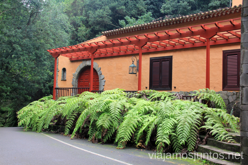 Centro de interpretación de los Tilos Ruta de los Nacientes de Marcos y Cordero, la Palma, Islas Canarias