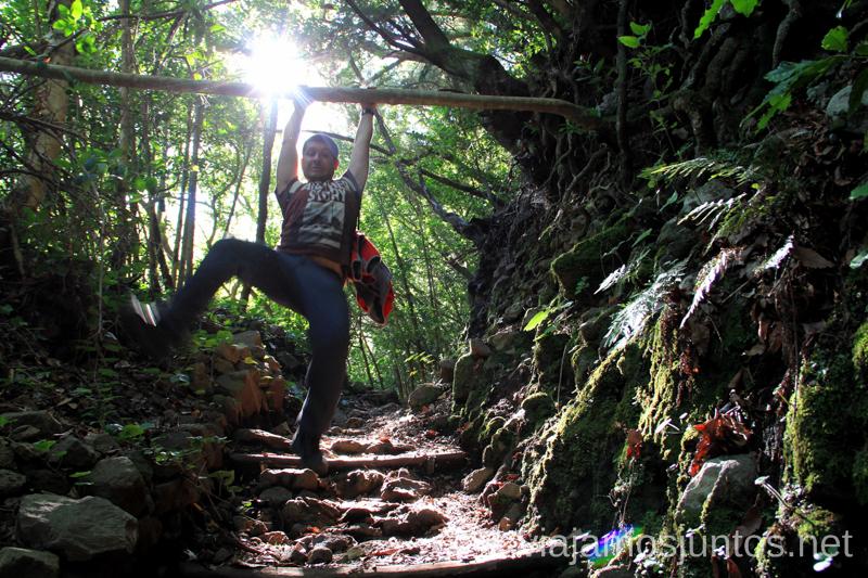 Intentando bajar de todas las formas la pendiente Ruta de los Nacientes de Marcos y Cordero, la Palma, Islas Canarias