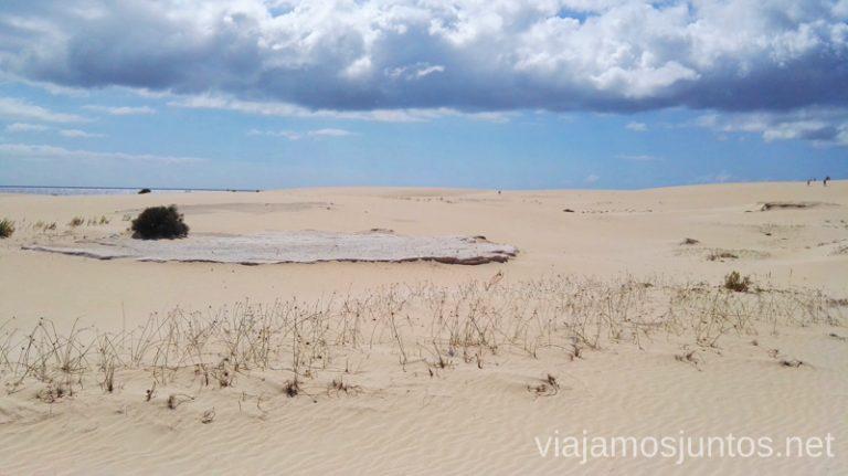 Las dunas de Corralejo 10 imprescindibles de Fuerteventura