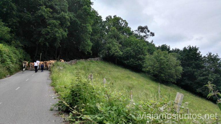 Pueblos locales con encanto Qué ver y hacer en Belmonte de Miranda, Asturias