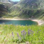 Lagos de Somiedo Ruta de los lagos de Saliencia Parque Natural de Somiedo Asturias