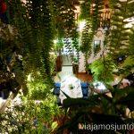 Taberna la Viuda Dónde comer en Córdoba