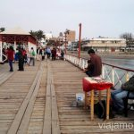 Entretenimiento del muelle: pesca todo lo que puedas