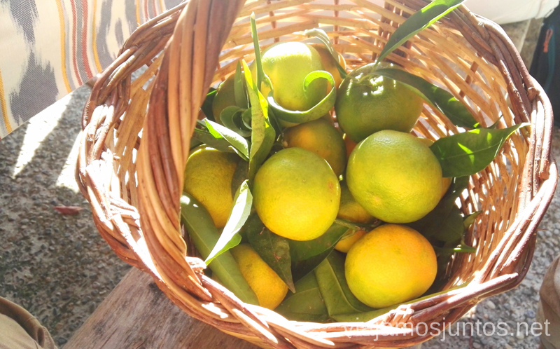 Mandarinas de la Serra de Tramuntana Un fin de semana en las Islas Baleares Mallorca