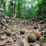 Caminos (trochas) de la selva peruana Viajar a la selva peruana. Consejos prácticos para organizar tu viaje a la selva peruana Peru #PerúJuntos Perú