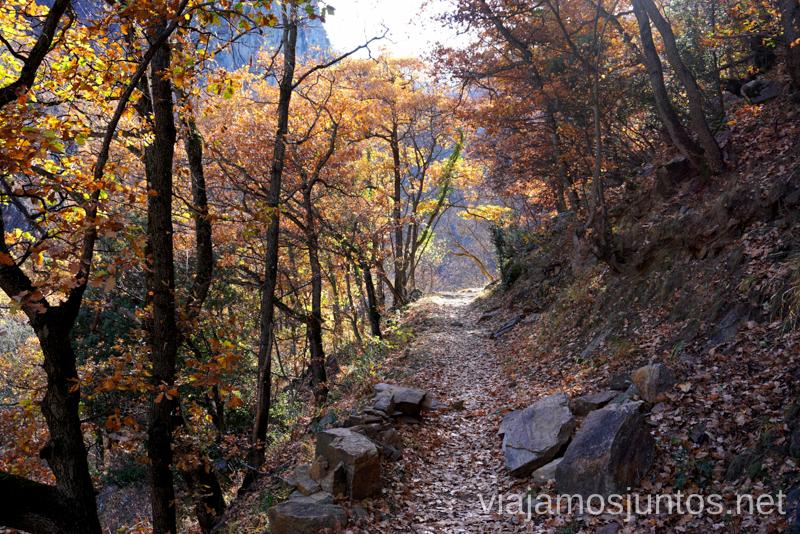 Otoño en la ruta del río Caranca Ruta de las Gorges de Caranca Qué ver y qué hacer en Francia