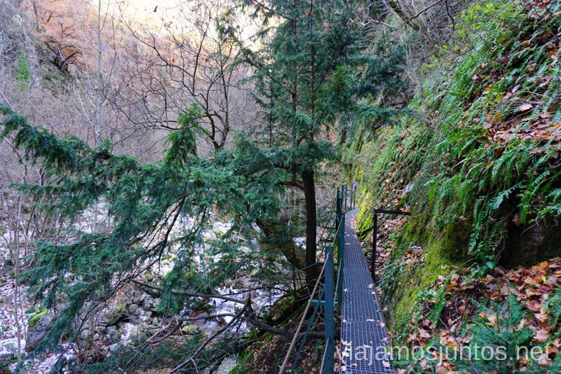 Pasarelas que atraviesan bosques Ruta de las Gorges de Caranca Qué ver y qué hacer en Francia