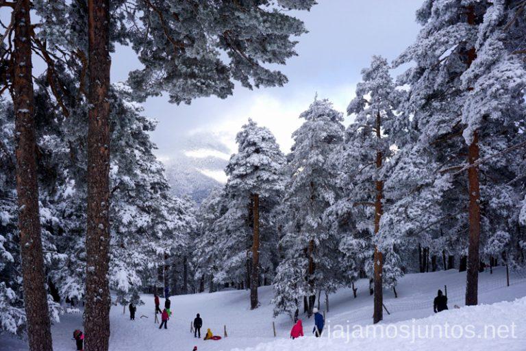 Te contamos dónde disfrutar de la nieve cerca de Madrid 3 rutas para disfrutar de la nieve cerca de Madrid