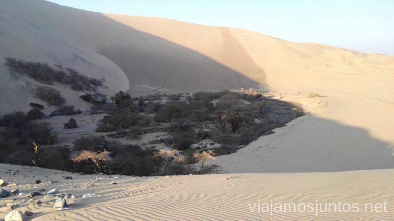 Oasis muerto en medio del desierto de Huacachina. Qué ver y qué hacer en Ica y el desierto y oasis de Huacachina Visita a la bodega de Los Tres Hermanos y El Catador Peru #PerúJuntos Perú