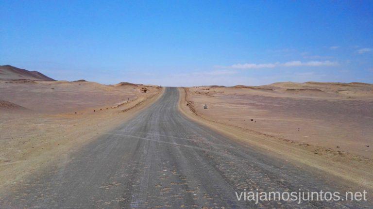 Qué ver y hacer en Paracas. Organizar la visita a las islas Ballestas y Carretera de sal en la Reserva Nacional de Paracas. Reserva Nacional de Paracas Peru #PerúJuntos Perú