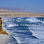 Islas Ballestas y la Reserva Nacional de Paracas. Perú