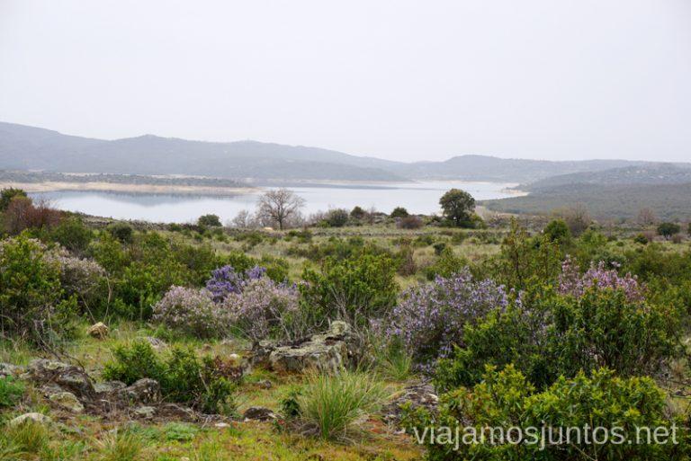 La senda del Genaro, GR300 en los alrededores del embalse de El Atazar. Que hacer en la Sierra Norte de Madrid Rutas de Senderismo