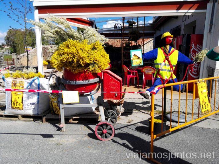 Navarredonda de Gredos. Incluso en las construcciones se celebra el festival Piorno en Flor Qué hacer en Gredos Norte, la Sierra Norte de Gredos. Dónde dormir y dónde comer