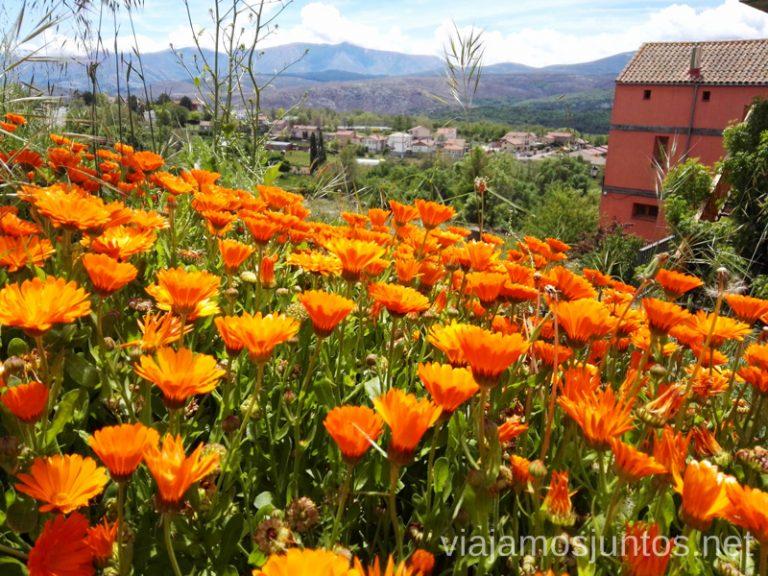 Hoyocasero, Gredos Norte. Qué hacer en Gredos Norte, la Sierra Norte de Gredos. Dónde dormir y dónde comer
