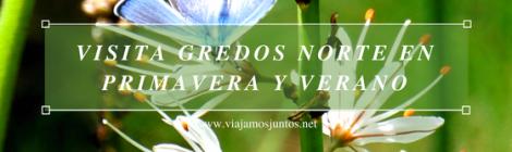 Primavera en Gredos Norte. Qué hacer en Gredos Norte, la Sierra Norte de Gredos. Dónde dormir y dónde comer
