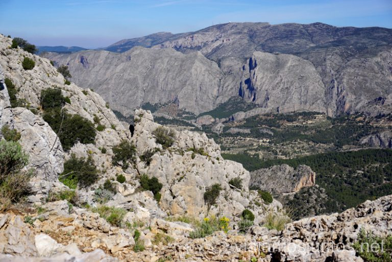 Paisaje desde la ruta de Puig Campana. Ruta de la ascensión al pico de Puig Campana Qué hacer en Benidorm y alrededores #RumboSurJuntos