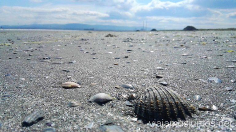 La playa de Bull island. Qué ver en los alrededores de Dublín. #IrlandaJuntos