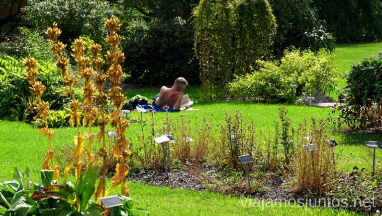 Gente relajándose en el Jardín Botánico. Qué ver y hacer en Dublín Nuestros imprescindibles #IrlandaJuntos