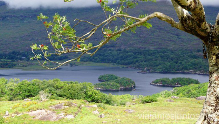 Mirador Lady's View en Parque Nacional Killarney. Qué ver y hacer en Southern Peninsulas Irlanda #IrlandaJuntos