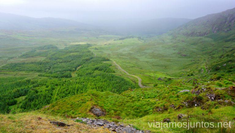 Reserva Natural Glengarriff Woods. Qué ver y hacer en Southern Peninsulas Irlanda #IrlandaJuntos
