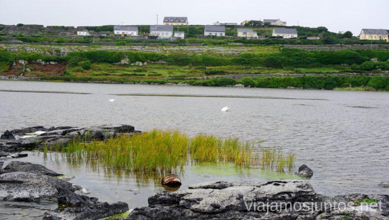 El lago en la isla Inisheer. Qué ver y hacer en Cliff Coast y Bay Coast Wild Atlantic Way Irlanda #IrlandaJuntos Ruta Costera del Atlántico