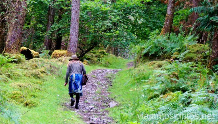 Irlandeses - muy unidos la mayoría a la naturaleza.