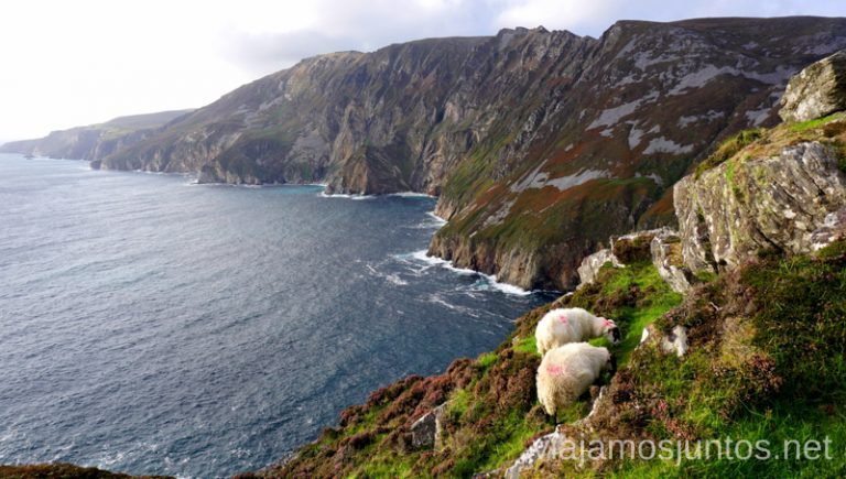Bunglass Point. Qué ver y hacer en Wild Atlantic Way Irlanda #IrlandaJuntos Northern Headlands