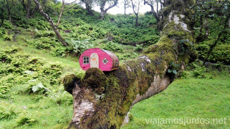¡Hablemos de las curiosidades que descubrimos en las casas irlandesas!