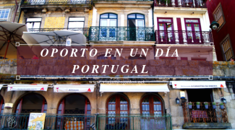 Qué ver y hacer en Oporto en un día Portugal