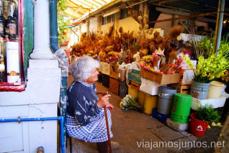 Escenas del mercado del Bolhao. Qué ver y hacer en Oporto en un día Portugal