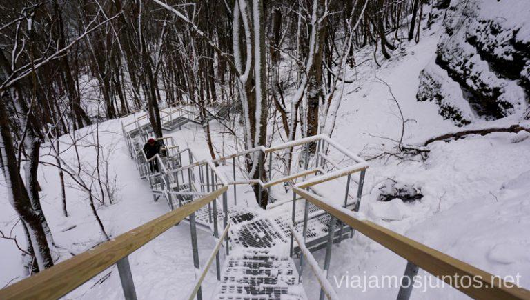 Sendas nevadas de Estonia. Consejos prácticos para viajar a Países Bálticos en invierno.