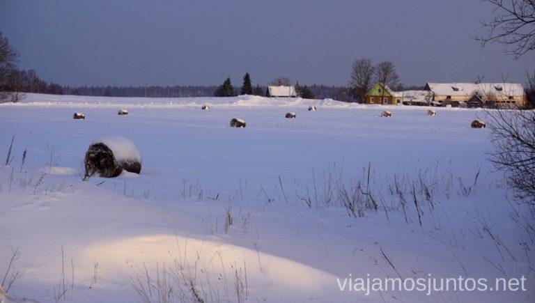 Cuando sale el sol en Países Bálticos en invierno, el paisaje se transforma. Qué ver y hacer en Países Bálticos. Viajar a Países Bálticos en invierno.