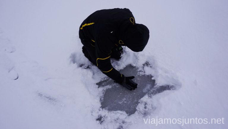 Buscando a ¿Nemo? Qué ver y hacer en Países Bálticos. Viajar a Países Bálticos en invierno.