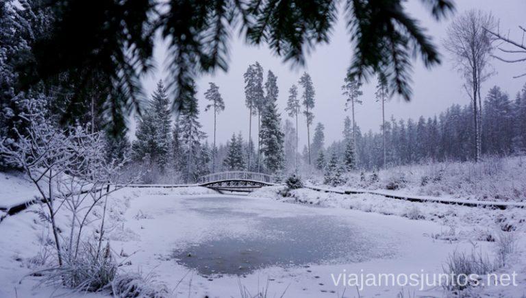 Consejos prácticos para viajar a Países Bálticos en invierno.