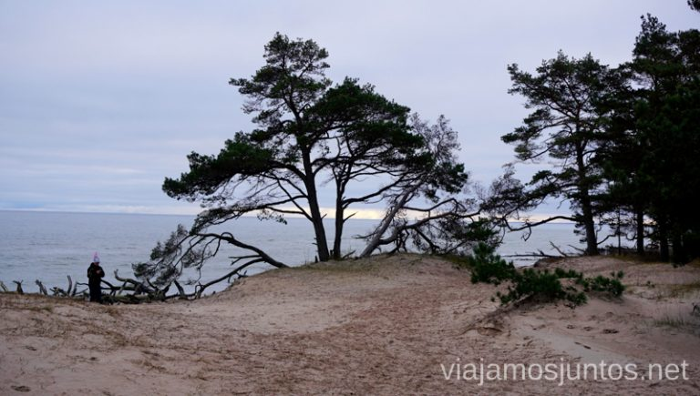 Paisaje del Cabo de Kolka. Itinerario de 14 días por Países Bálticos. Roadtrip por Países Bálticos de 2 semanas, ruta de viaje