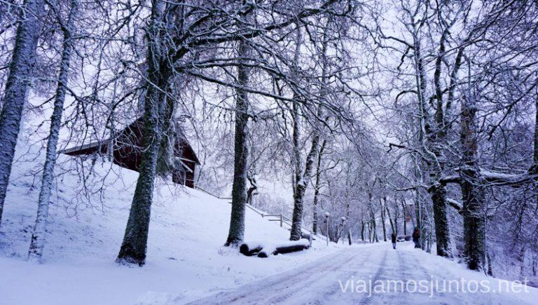 Museo al aire libre en Sigulda. Itinerario de 14 días por Países Bálticos. Roadtrip por Países Bálticos de 2 semanas, ruta de viaje
