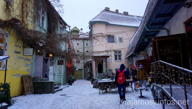 Paseando por Tallinn nevado. Itinerario de 14 días por Países Bálticos. Roadtrip por Países Bálticos de 2 semanas, ruta de viaje