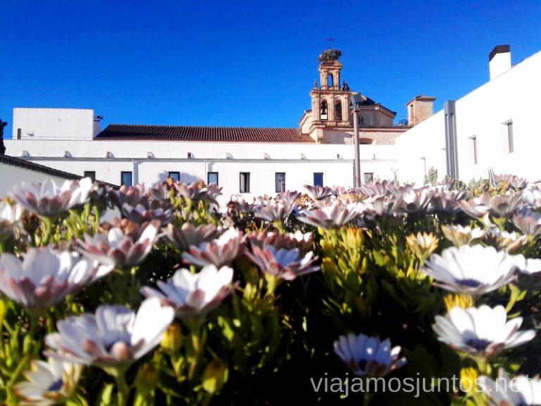 El nido de cigüeñas sobre el campanario del Hotel-convento Aracena. Qué ver y hacer en Aracena Provincia de Huelva Andalucía España