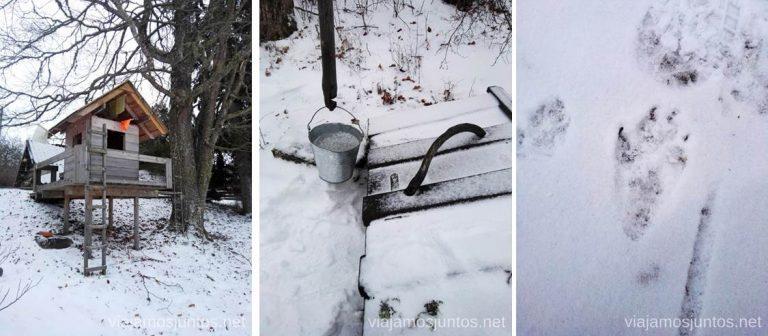La dura vida en invierno en el norte de Estonia. Qué ver y hacer en el norte de Estonia. Países Bálticos.