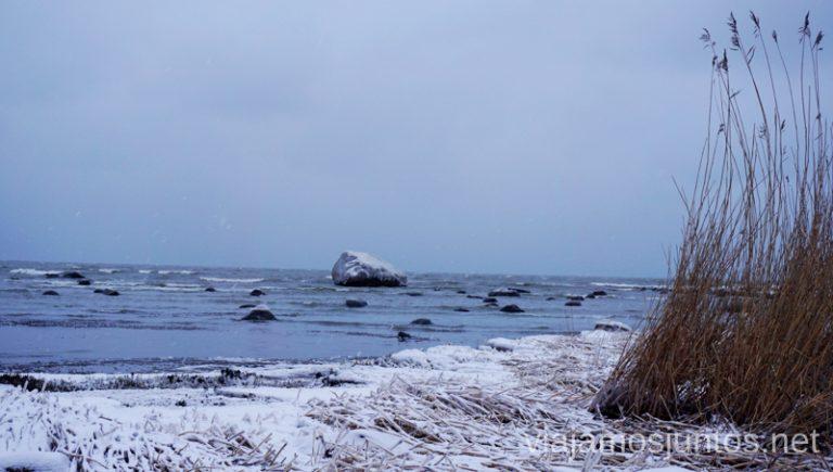 Mar Báltico en invierno. Bloques erráticos congelados. Qué ver y hacer en el norte de Estonia. Países Bálticos.