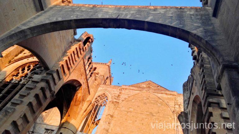 Catedral de Narbona. Qué ver en Narbona y los alrededores