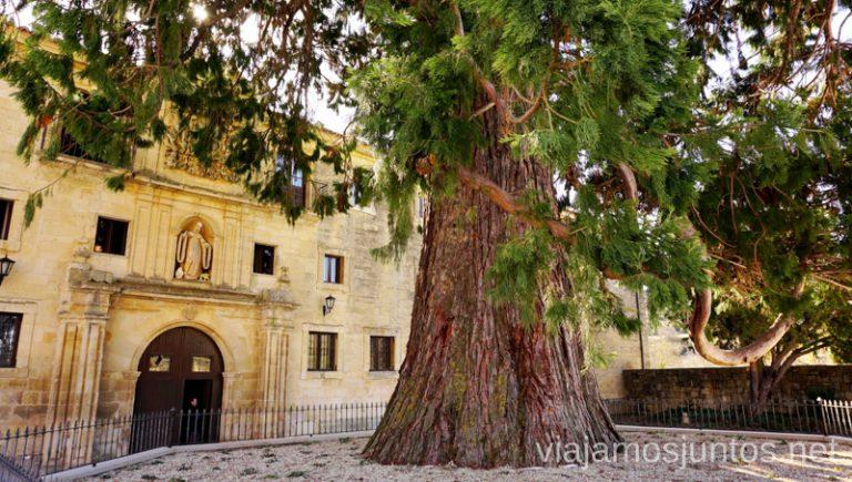 Monasterio de Santo Domingo de Silos Qué ver y qué hacer en el valle del Arlanza. Pueblos con encanto del Arlanza Castilla y León