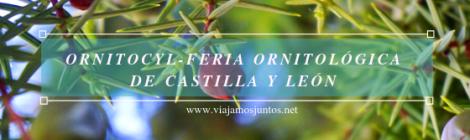 Qué ver y qué hacer en OrnitoCyL, Ávila. Castilla y León
