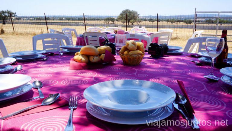Comida campestre en la finca del ganado bravo. Qué ver y hacer en el lago Alqueva #Experiencias_Alqeuva Extremadura Portugal